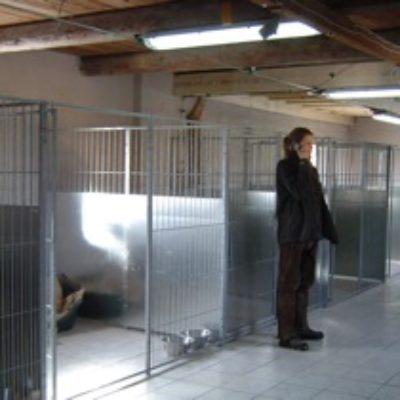 Måløv Hundepension