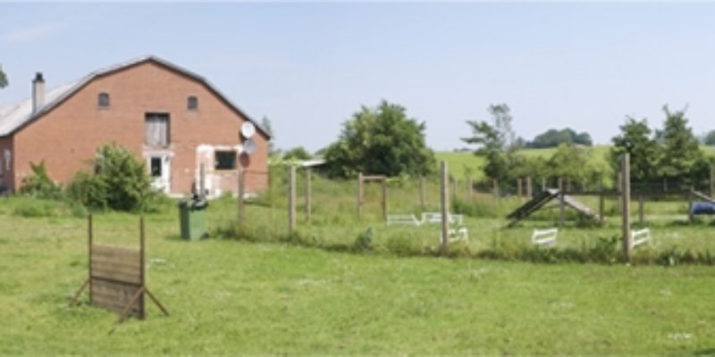 Hundepension Domus Canis