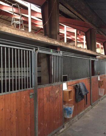 Hestepension Riisengaarden